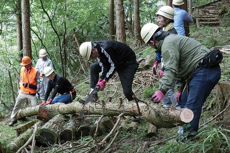 生物多様性保全活動の一環として、藤沢工場では「かながわ水源の森林づくり」活動で、森林再生パートナーとして保全活動をしている。足柄上郡やどりぎ水源保全活動で、従業員と家族が間伐作業や自然観察を体験している