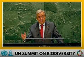 国連総会の生物多様性サミットで演説するグテーレス国連事務総長