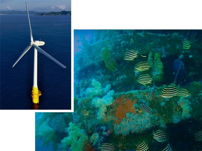 洋上風力導入へ、再エネ海域利用法の第1号を選定