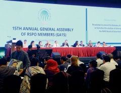 """2018年11月のRSPO総会では認証の基準を改定し、環境や人権上の基準を強化した<br><span class=""""fontSizeS"""">(写真:WWFジャパン)</span>"""