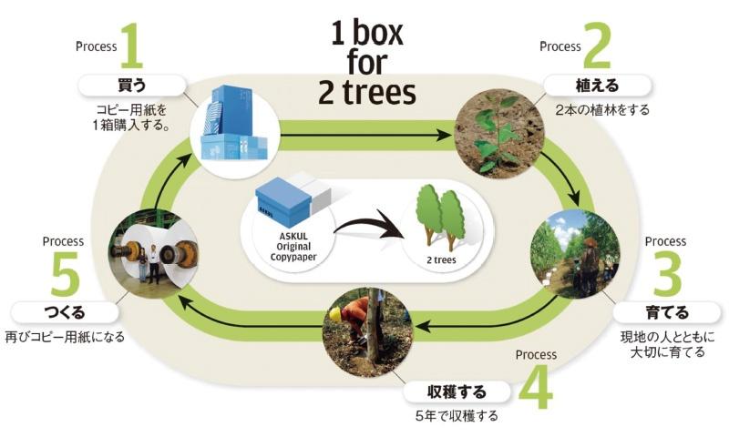 """■ インドネシアにおける森林資源の保全と循環の仕組み A4のコピー用紙1箱5000枚の原材料としてアカシヤやユーカリの木が1本必要だが、その倍である2本の植林の実行を確認していくのがアスクルの「1 box for 2 trees」活動のコンセプトである<br><span class=""""fontSizeS"""">(出所:アスクル)</span>"""