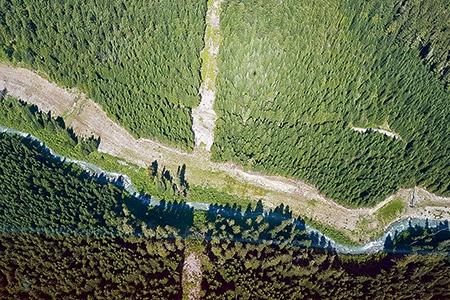 """森林保全では、今後、人工衛星などを活用して監視体制を強化する<br><span class=""""fontSizeS"""">(写真:ユニリーバ・ジャパン・ホールディングス)</span>"""