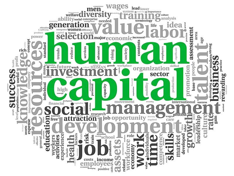 今さら聞けない人的資本の情報開示、ポイントと課題を一挙に解説