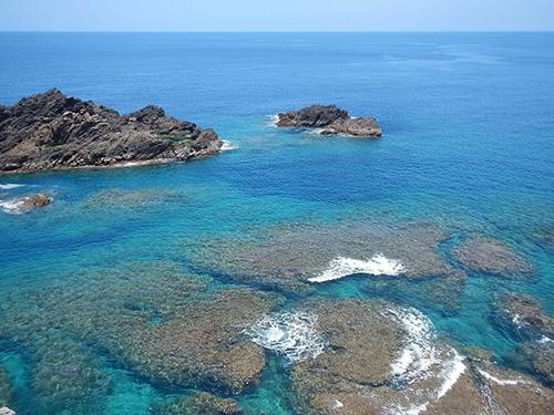 沖永良部島の海(写真提供:石田氏)
