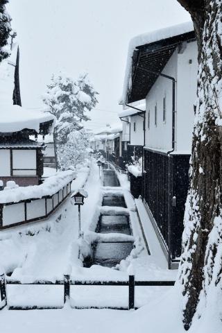 最初の訪問で林さんを魅了した飛騨古川の街並み(撮影:大槻純一)