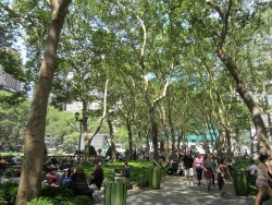 美しいプラタナス並木の緑陰の下の賑わい(写真:植田直樹)