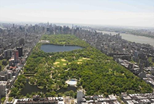 セントラルパークでは、年間88億円の経常予算を募るセントラルパーク・コンサーバンシー(Central Park Conservancy)が公園を運営する(写真: Central Park Conservancy)