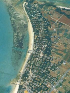 沖縄の伝統的な集落(本部町備瀬)。森のような樹木の中に約300の民家が並ぶ。一軒一軒の家は、それぞれの宅地の四方を高さ7~8mのフクギと呼ばれる樹木によって生垣のように囲まれている。こうして隣同士の住人と協調し合いながら、街全体を防風林で囲むことで、台風の猛威から自分たちの生活を守ってきた(写真:琉球新報社)
