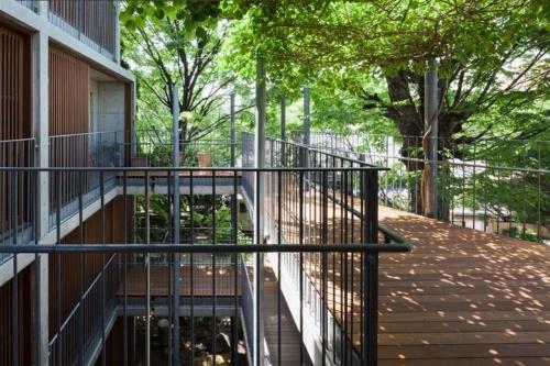 欅ハウス(2003年)。樹齢250年の欅を囲んで15世帯の家族が暮らす(写真提供:HAN環境建築設計事務所、撮影:吉田 誠)