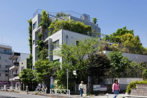 欅ハウスの外観(写真提供:HAN環境建築設計事務所、撮影:吉田 誠)