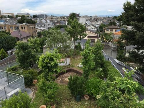 経堂の杜の屋上(写真:甲斐 徹郎)