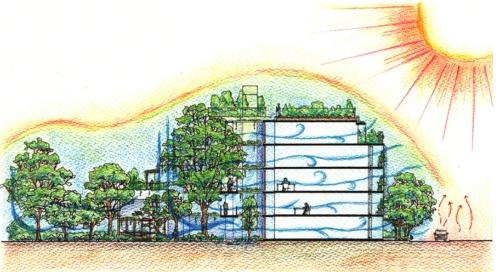 「欅ハウス」における緑と暮らしとのつながり。樹齢250年の欅が生み出す微気候が各室内の快適性を担保している(資料:チームネット)