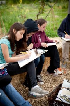バークレー市のマーティン・ルーサー・キング・ジュニア中学校でのESYの授業風景。同校でのプログラムの運営はアリス・ウォータース氏が設立した財団、the Edible Schoolyard Projectが担当している(写真:Erin Scott Photography)