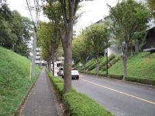 左は廃止する既存の道路(以前の様子)。商業施設と公園を分断していた(資料:町田市、東京急行電鉄)。右は道路廃止に向けて工事中の5月時点の様子(写真:日経BP総研)