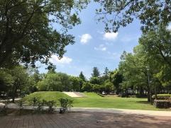 左はリニューアル前の竹園西広場公園。砂利敷きで水はけが悪く利用者は少なかった。右はリニューアル後。2020年7月に撮影(写真:フージャースコーポレーション)