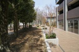 マンション敷地と公園の境界。段差や木立ちはあるが、フェンスなどは設置していない(写真:左・日経BP 総合研究所、右・赤坂 麻実)