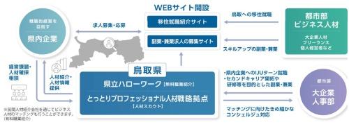 鳥取県が進める大都市圏の人材獲得事業の全体像。「鳥取県立ハローワーク」と「とっとりプロフェッショナル人材戦略拠点」という2つの組織が緊密に連携を図り、様々な取り組みを同時並行で行いながら大都市圏のビジネス人材を地域企業にマッチングする事業を進めている(図提供:鳥取県立鳥取ハローワーク)
