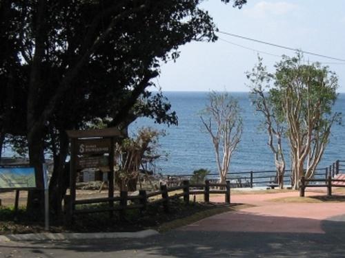 整備後の姿。県の補助により、東シナ海と開聞岳が見晴らせる広場が完成した(写真:頴娃おこそ会)