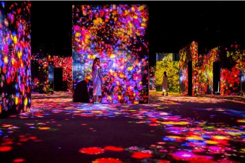 デジタルアートミュージアムの展示イメージ(資料:チームラボ)