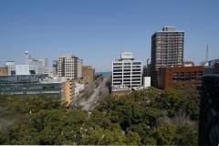 ウィング席最上部から、横浜公園、日本大通り、横浜港を望む(写真:日経BP)