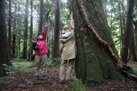 ヒバの森散策の一番人気は、森の中で横たわって休憩する時間。ヒノキチオールの働きでヒバの森には下草が生えにくく、その分、視界が広がる開放感を得られる。休憩後は軽めのストレッチも。ツアー参加者には、清々しい香りのヒバウォーターがプレゼントされる