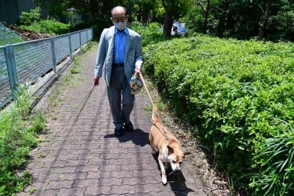 若山氏に散歩に連れて行ってもらう文福(写真:末並 俊司)