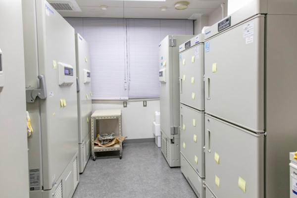 超低温冷蔵庫の中には3000人以上の凍結便が保存されている。研究の基になる貴重なサンプルだ(写真:今 紀之)
