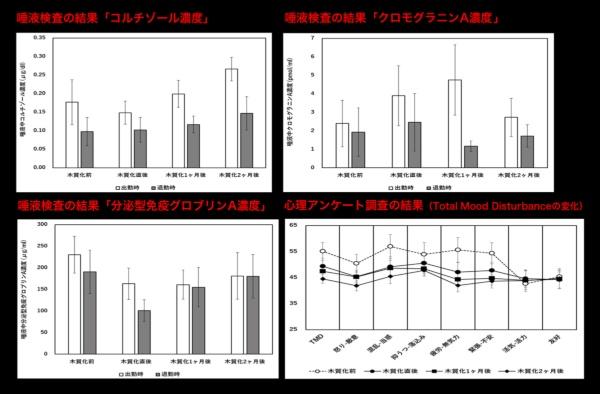 図2●コルチゾール濃度、クロモグラニンA濃度、分泌型グロブリンA濃度それぞれの平均値を、木質化前後で比較したグラフ。コルチゾール濃度、クロモグラニンA濃度は木質化後、上昇が抑制されている。分泌型グロブリンAについては木質化後に減少幅がより小さく変化している(出所:森林・自然環境技術教育研究センター)