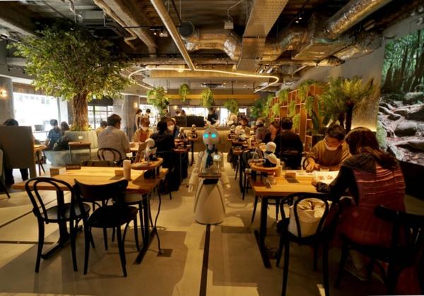 「分身ロボットカフェDAWN ver.β」の店内。それぞれの座席の分身ロボット「OriHime」がメニューなどを説明、大きなサイズのOriHime-Dがコーヒーなどの飲料を運ぶ(写真:日経BP 総合研究所)