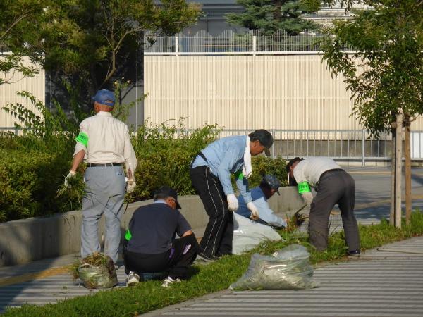 市内で行われた清掃ボランティアの様子(提供:門真市シルバー人材センター)