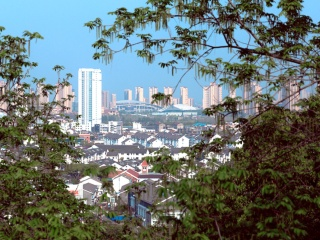 中国で重要性増す「炭中和(カーボン・ニュートラル)」、日本にもビジネスチャンス