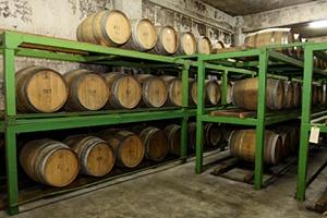 真夏でも20度の地下セラーには、フランス製のフレンチホワイトオークの樽に一年間 寝かされる赤ワイン50樽が