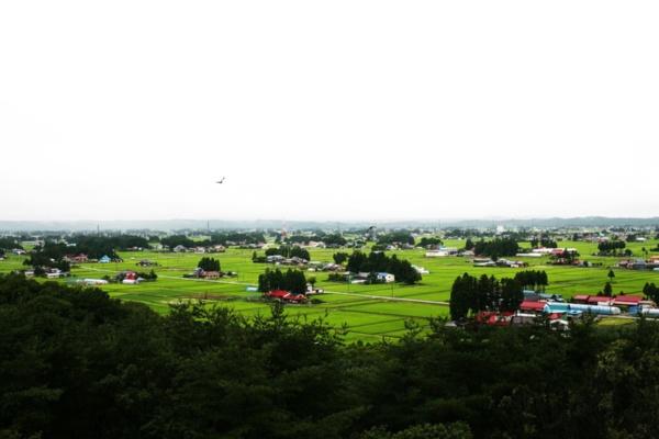 日本三大散居村にも数えられる胆沢地区の風景。広大な水田に農家が点在する(提供:ファーメンステーション、以下同)