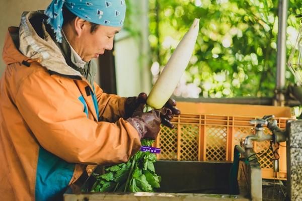 清水農園の清水雄一郎さん(写真撮影:大野智嗣さん)
