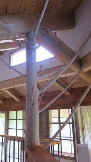 客室の構造を支える柱。枝をもそのまま利用している(写真:大塚千春)