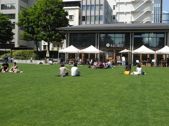 (写真2)カフェレストラン「RACINES FARM TO PARK」前の芝生広場。生育状況は良好で、一面の緑が美しい。屋外のテラス席で飲食する来園者も多い(写真:茂木俊輔)