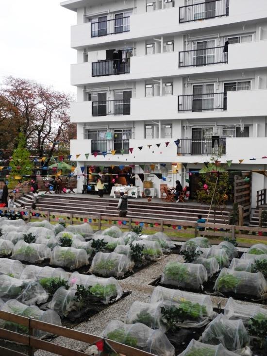 (写真2)アグリメディアが神奈川県座間市のホシノタニ団地で運営する「シェア畑」と住棟1階の農家カフェ。撮影は2015年11月のイベント開催時(写真:茂木 俊輔)