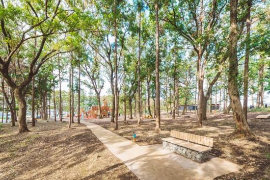 (写真2)鶴間公園では里山の風景を受け継ぐ「つるまの森」内に園路や遊び場などを再整備した(画像提供:町田市・東急)