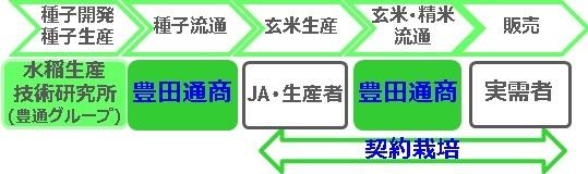 豊田通商の構築した多収米ビジネスモデル