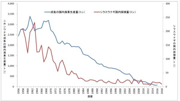 国内でのウナギ成魚の漁業生産量(青い折れ線)と、稚魚のシラスウナギの国内採捕量(赤い折れ線)は年々減り続けている。データは農林水産省「漁業・養殖業生産統計年報」、農林水産省「漁業・養殖業生産統計年報」(1957年(昭和32年)〜2002年(平成14年))、2003年(平成15年)以降は水産庁の調べから作成。シラスウナギの国内採捕量は、池入数量から輸入量を差し引いたもの。1970年代初めまでのシラスウナギの統計にはシラスウナギが少し成長して黒色になったクロコが入っている可能性がある