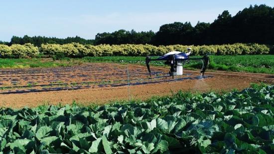 ドローンでピンポイントに農薬を散布する(写真提供:オプティム)