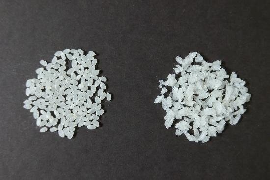精米した通常のお米(左)とアルファ米(右)(写真:高山 和良)