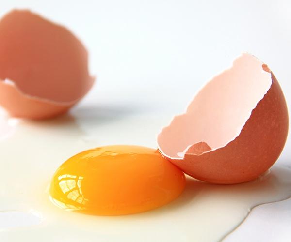 驚きの素材「卵麹」 トップシェフも注目する発酵の力