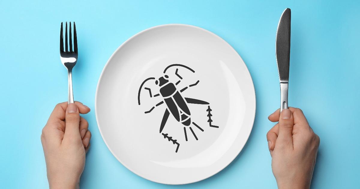 コオロギが優れた食材であるこれだけの理由 日本で本格化する昆虫食(2)