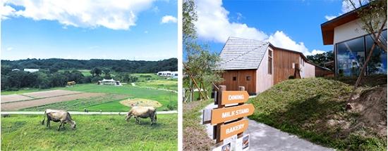 左の写真はクルックフィールズの「農」の一部。スイスブラウン種の乳牛が放牧され、園内の圃場が見える。右の写真は「食」の部分。レストランやミルクスタンド、ベーカリーなどの施設で豊かな「食」を楽しめる(写真左:クルックフィールズ提供、写真右:高山和良)