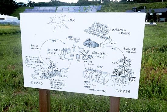 クルックフィールズの循環型農業の仕組みや、水の再利用や太陽光エネルギーの使い方などをイラスト入りで解説した看板。園内を散策しながらこうしたサステナブルな仕組みを実感できるようになっている(写真:高山和良)