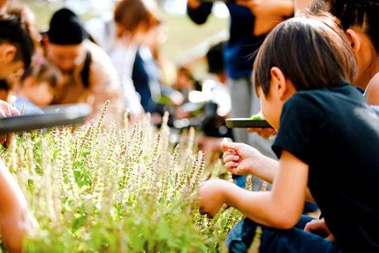 園内のエディブルガーデンで収穫体験中の来園者の様子(写真提供:クルックフィールズ)