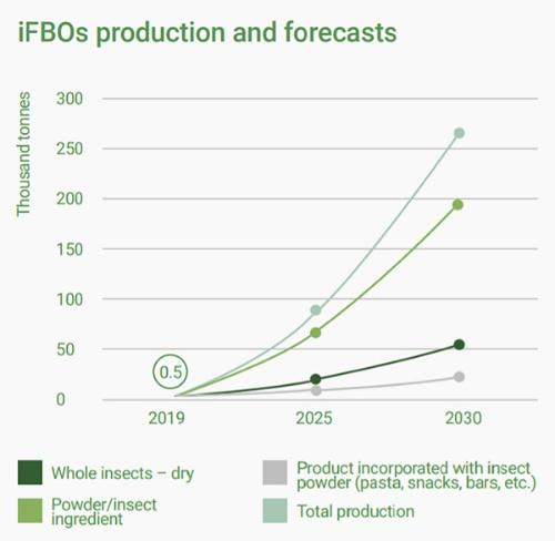 昆虫食関連企業の生産状況と将来の展望。凡例は左上から時計回りに左下へ、乾燥昆虫(丸のままの昆虫)、粉状昆虫を用いた商品(パスタ、スナックなど)、全体の生産量、粉状昆虫及び昆虫成分。縦軸の単位は1000トン、横軸は年を表す