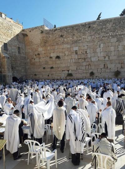 ユダヤ新年に集まり祈る超正統派の人々。昨年の様子(写真提供:岡庭矢宵)