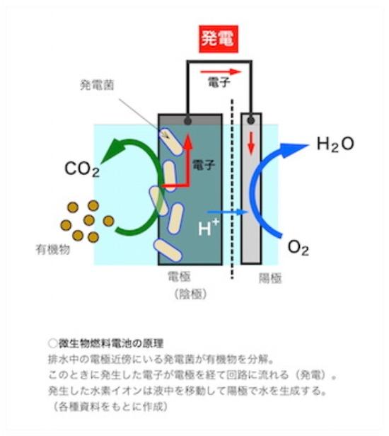 (図1)汚水中の電極近傍にいる発電菌が有機物を分解
